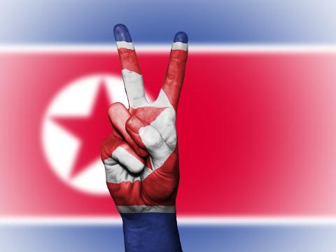 North Korea flag and peace sign
